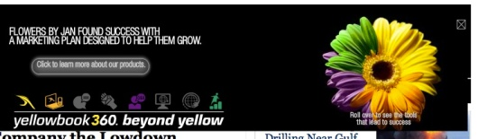 yellowbook display ad with colorful daisy and mouseovers
