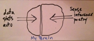 sketch of left and right brain on white board
